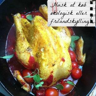 kylling/LaCucinaNada
